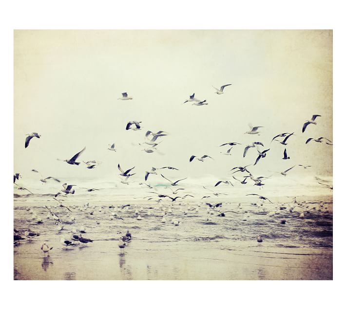 river-of-birds-framed-print-by-lupen-grainne-o